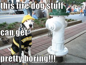this fire dog stuff can get  pretty boring!!!