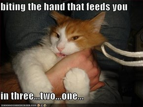 biting the hand that feeds you   in three...two...one...