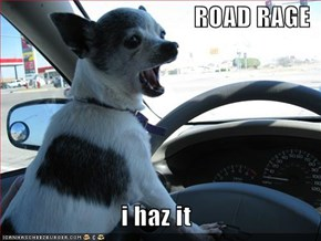 ROAD RAGE  i haz it
