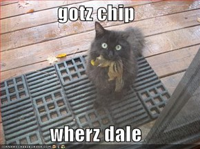 gotz chip  wherz dale