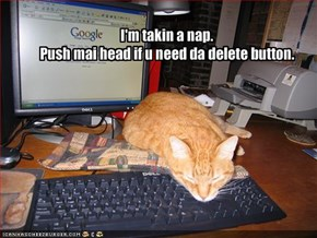I'm takin a nap.