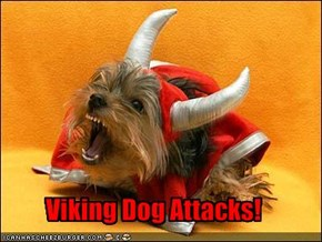 Viking Dog Attacks!