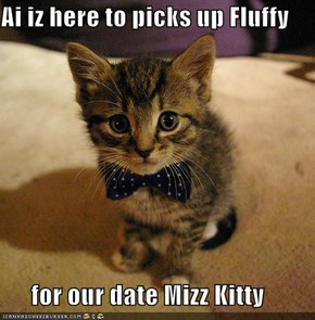 Ai iz here to picks up Fluffy        for our date Mizz Kitty