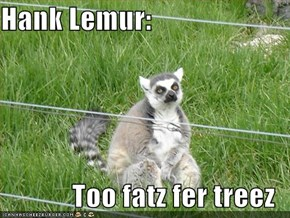 Hank Lemur:  Too fatz fer treez