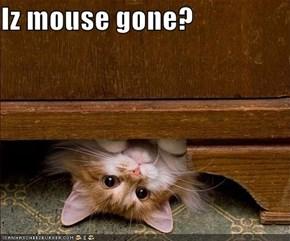 Iz mouse gone?
