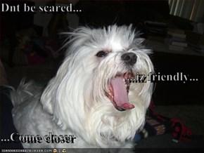 Dnt be scared... ...iz friendly... ...Come closer