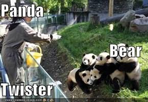Panda Bear  Twister