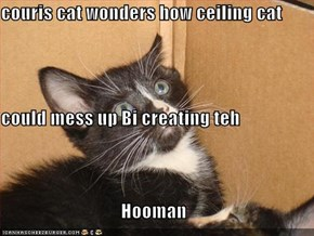 couris cat wonders how ceiling cat could mess up Bi creating teh Hooman