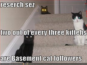 reserch sez  two out of every three kittehs are Basement cat followers