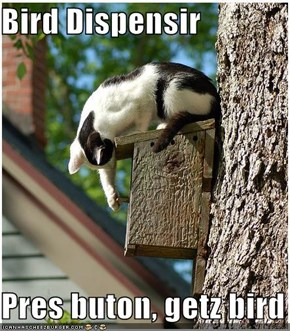 Bird Dispensir  Pres buton, getz bird