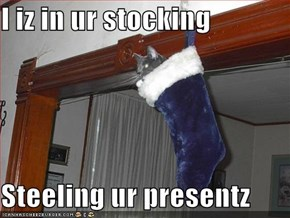 I iz in ur stocking  Steeling ur presentz