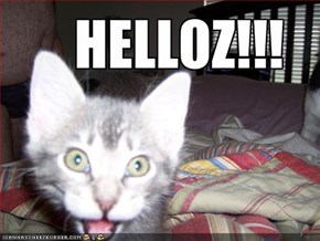HELLOZ!!!