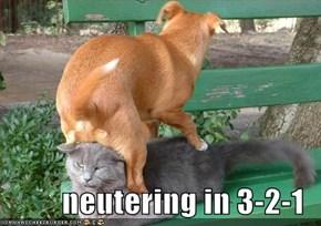 neutering in 3-2-1