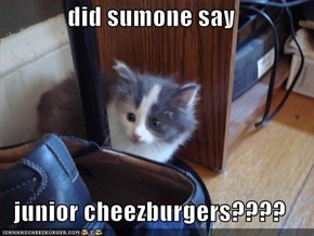 did sumone say  junior cheezburgers????