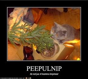 PEEPULNIP