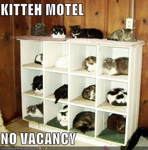 KITTEH MOTEL  NO VACANCY