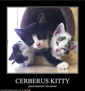 CERBERUS KITTY
