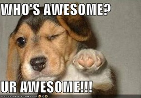 WHO'S AWESOME?  UR AWESOME!!!