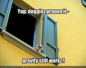 Yup, doggiez proovn it -