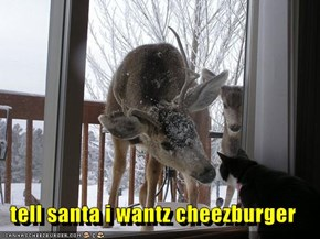 tell santa i wantz cheezburger