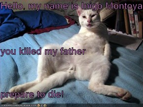 Hello, my name is Inigo Montoya you killed my father prepare to die!