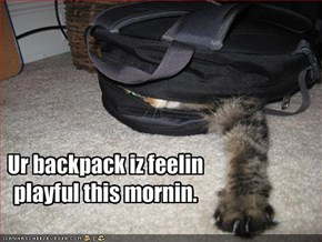 Ur backpack iz feelin playful this mornin.