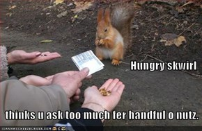 Hungry skwirl    thinks u ask too much fer handful o nutz.