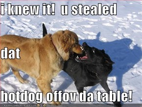 i knew it!  u stealed dat  hotdog offov da table!