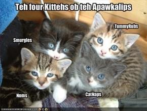 Teh four Kittehs ob teh Apawkalips
