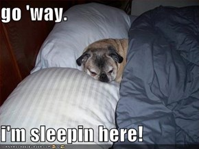 go 'way.  i'm sleepin here!