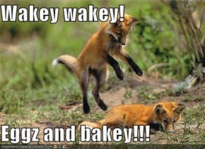 Wakey wakey!  Eggz and bakey!!!