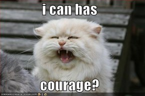 i can has  courage?