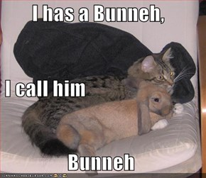 I has a Bunneh,  I call him  Bunneh