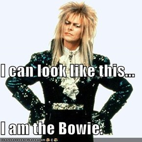 I can look like this... I am the Bowie.