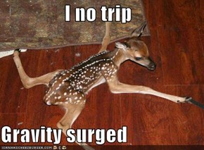 I no trip  Gravity surged