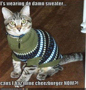 I's wearing de damn sweater...  cans I haz mine cheezburger NOW?!