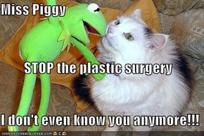 Miss Piggy   STOP the plastic surgery I don't even know you anymore!!!