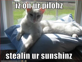 iz on ur pilohz  stealin ur sunshinz