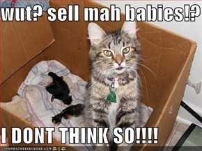 wut? sell mah babies!?  I DONT THINK SO!!!!