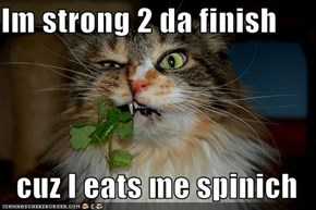 Im strong 2 da finish  cuz I eats me spinich