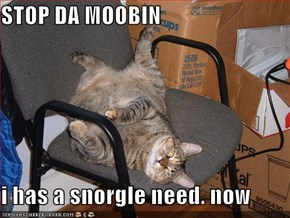 STOP DA MOOBIN  i has a snorgle need. now