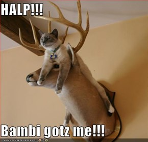 HALP!!!  Bambi gotz me!!!