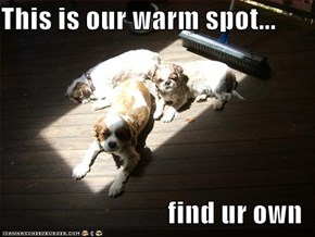 This is our warm spot...  find ur own