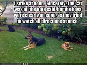 """I strike at noon.  Sincerely, The Cat""