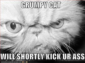 GRUMPY CAT  WILL SHORTLY KICK UR ASS