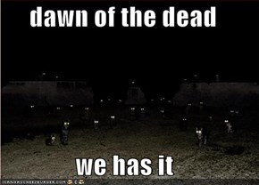 dawn of the dead  we has it