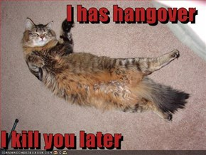 I has hangover  I kill you later