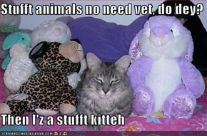 Stufft animals no need vet, do dey?  Then I'z a stufft kitteh