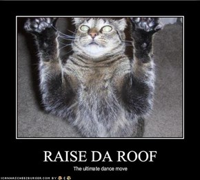 RAISE DA ROOF