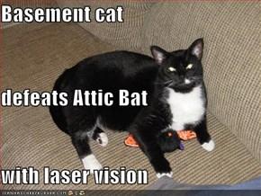 Basement cat defeats Attic Bat with laser vision